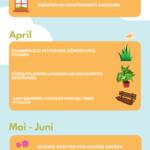 Gartenarbeiten im Frühjahr Infografik