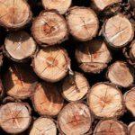 Holzboden im Badezimmer – Tipps und Auswahl