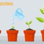 Pflegeleichte Zimmerpflanzen – Tipps und Tricks für ein grünes Zuhause
