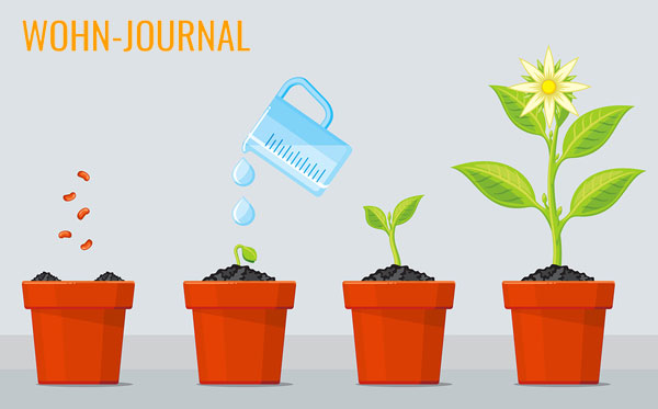 pflegeleichte zimmerpflanzen - tipps und tricks für ein grünes, Garten und Bauten
